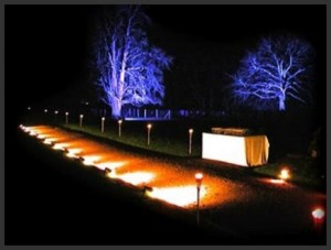 Landscaping by TSP Lawns & Landscapes Yorktown Virginia - Outside Lighting