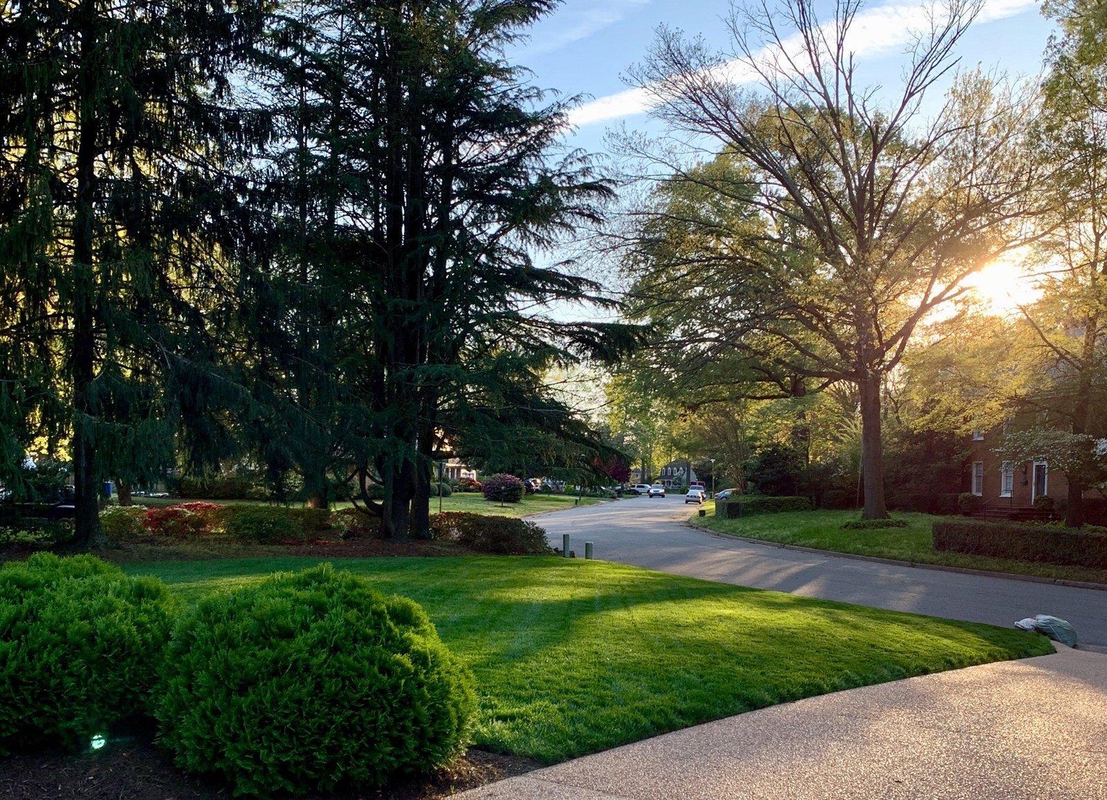 TSP Lawns & Landscaping - lawncare - grading - drainage - patios
